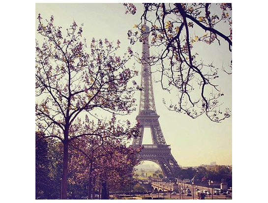 Photography featuring the Eiffel tower