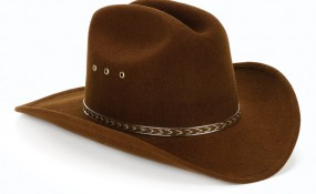 A brown sheriff's hat