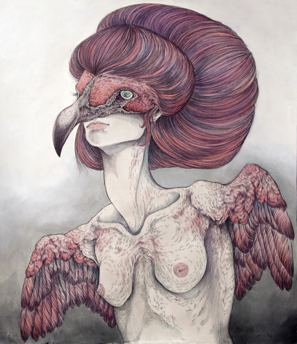 A Flightless Bird - Art by Caitlin Hackett