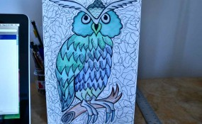 Purple owl drawing