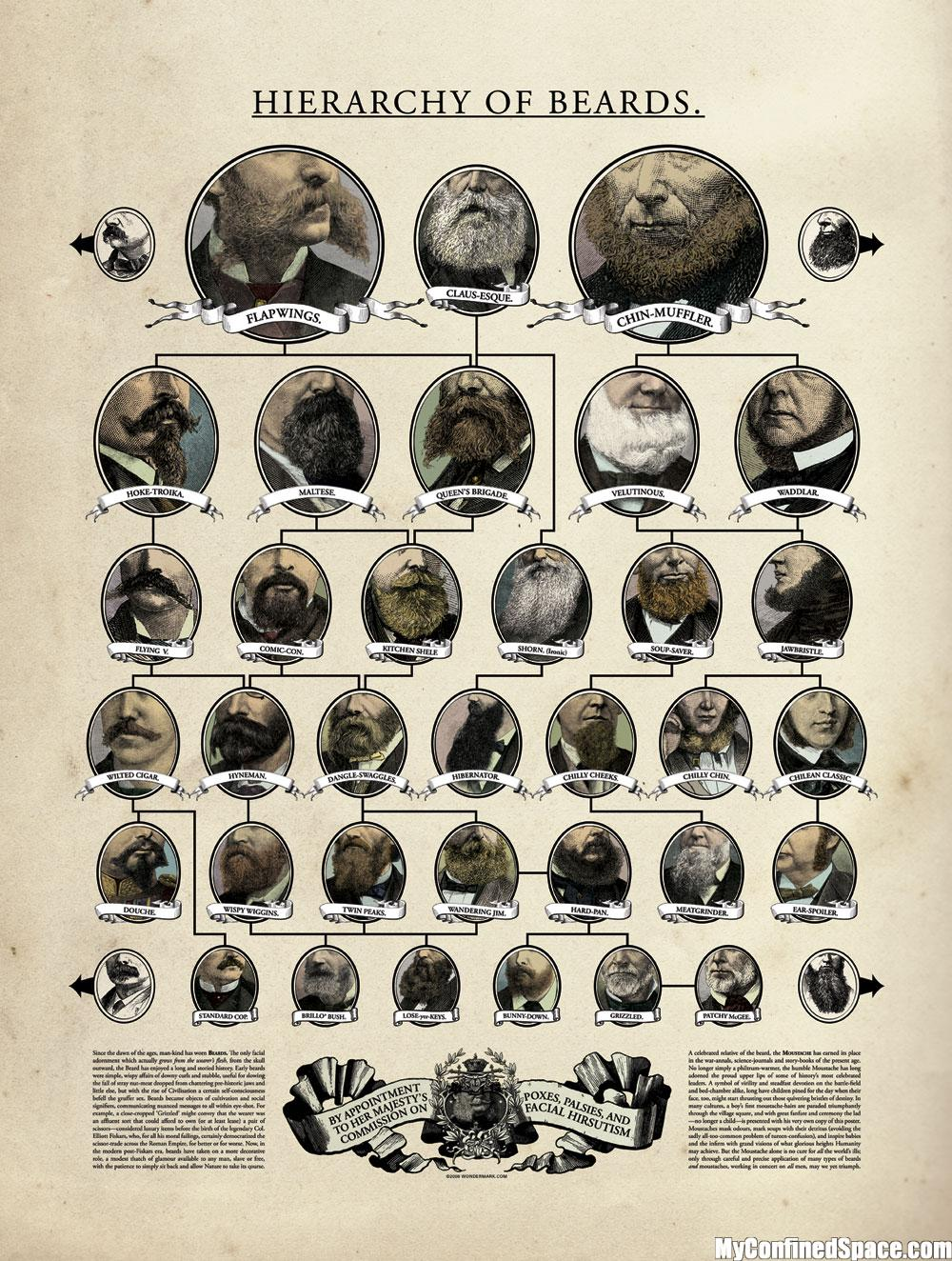 Superb A Master List Of Beard And Mustache Charts Zouch Schematic Wiring Diagrams Amerangerunnerswayorg