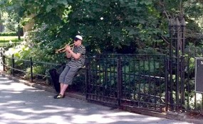 man playing trumpet in Madison Square park, New York City
