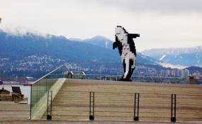 The Digital Orca by Douglas Coupland