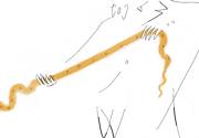 "Alborozo - ""Snake Straightening"""