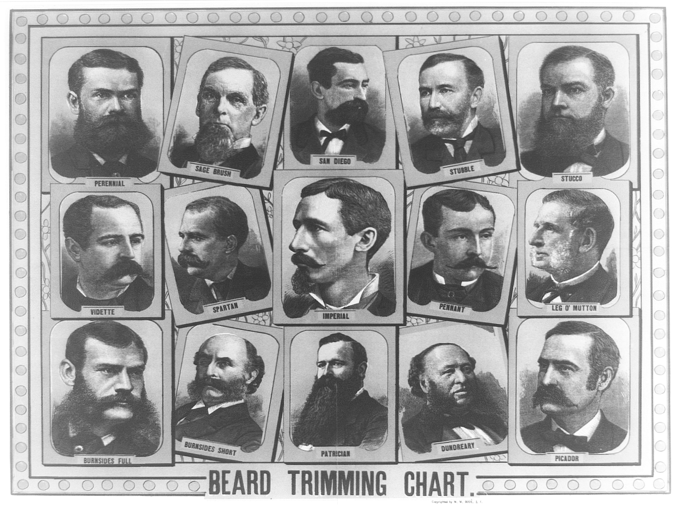 Beard Chart Graphic Design 5