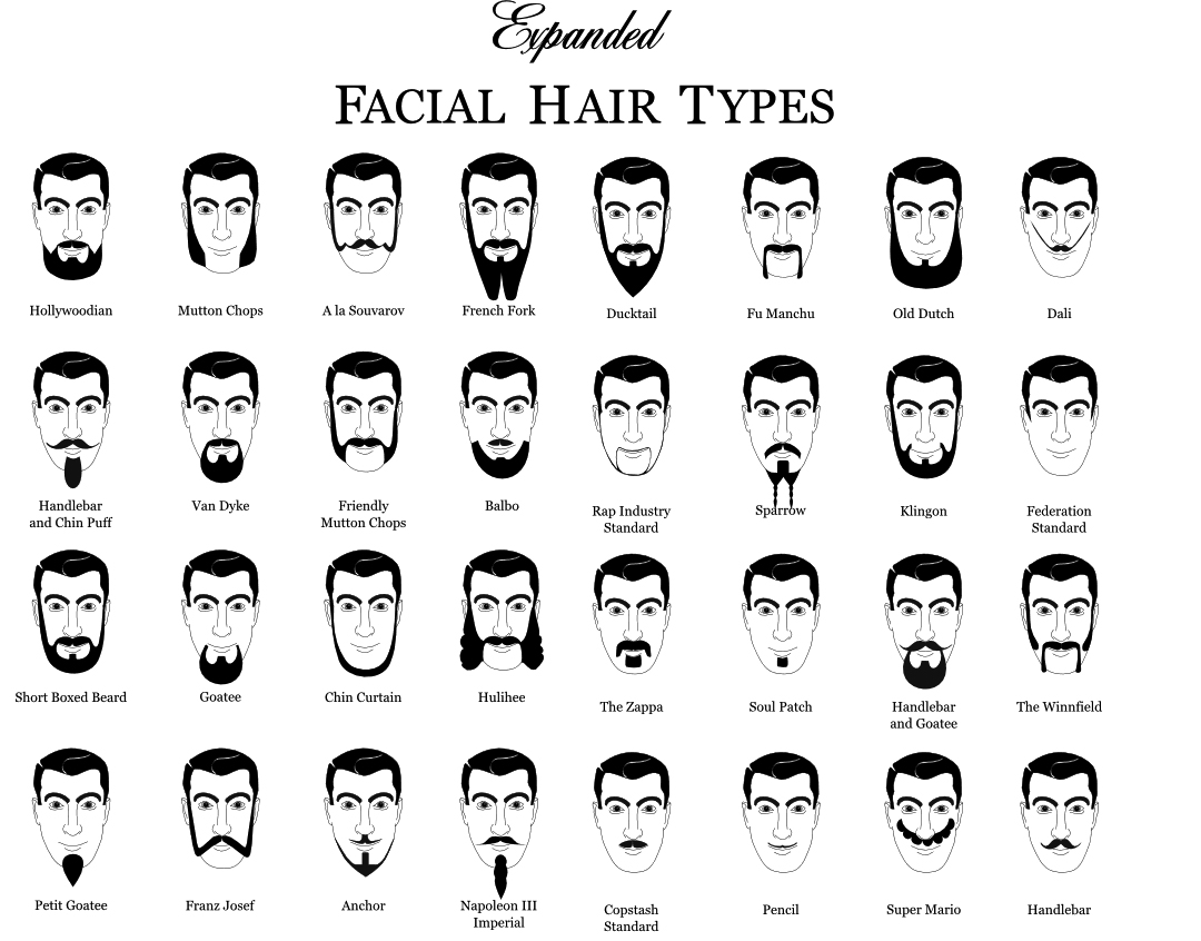 A master list of beard and mustache charts zouch for Different types of design styles